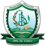 Dembi Dolo University Job Vacancy