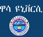 Hawassa University Job Vacancy 2021