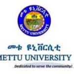Mettu University Ethiopia Job Vacancy