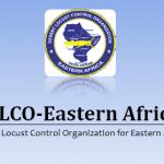 Director and Aircraft Engineers Ethiopia Job Vacancy 2021