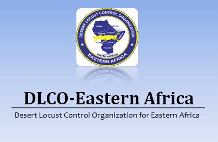 Director and Aircraft Engineers Ethiopia Job Vacancy 2020