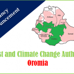 Forestry Officer and Finance Officer Ethiopia Job Vacancy 2021