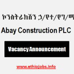 Internal Auditor Ethiopia Job Vacancy 2021