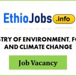 Regional Project Coordinator Ethiopia Job Vacancy 2021