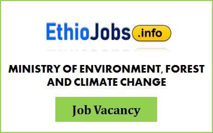 Regional Project Coordinator Ethiopia Job Vacancy 2020