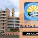 BDU Job Vacancy
