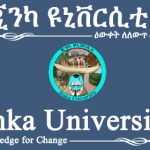Jinka University Job Vacancy