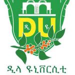 Dilla University Ethiopia Job Vacancy