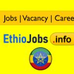 SEED PLC Ethiopia Job Vacancy