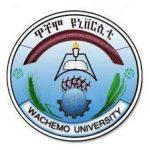 Wachemo University Vacancy