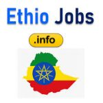 Addis Fana Trading and Hotels Business Job Vacancy