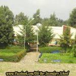 Dil Ber Secondary School Ethiopia Job Vacancy