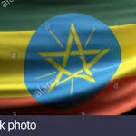 Ethio Japan Hedase Elementary School Job Vacancy
