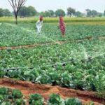 Farmers Urban Development Commission Ethiopia Job Vacancy