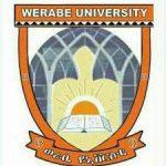 Werabe University Ethiopia Job Vacancy