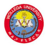 Wollega University Job Vacancy