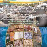 Addis Ababa Abattoirs Enterprise Job Vacancy