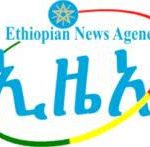Ethiopian News Agency Job Vacancy