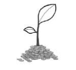 Afar Microfinance SC Job Vacancy