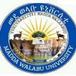 Madda Walabu University Job Vacancy
