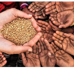 Mekedonia Charity Organization Ethiopia Job Vacancy