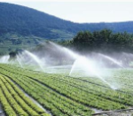 National Biogas Programme of Ethiopia Job Vacancy