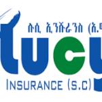 Lucy Insurance SC Job Vacancy