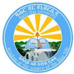 Bahir Dar University Job Vacancy 2021