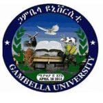 Gambela University Job Vacancy 2021