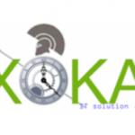 XOKA IT Solution PLC Job Vacancy